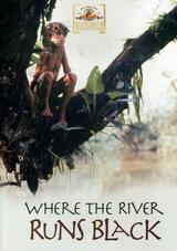Der Junge vom schwarzen Fluss - Poster