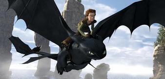 how to train a dragon piolot