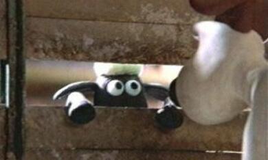 Wallace & Gromit unter Schafen - Bild 6