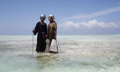 Über den Inseln Afrikas - Sansibar - Bild 2