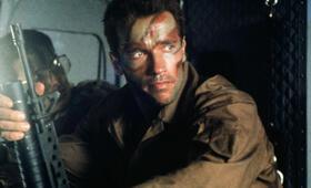 Predator mit Arnold Schwarzenegger - Bild 12
