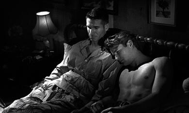 Der junge James Dean - Joshua Tree 1951 - Bild 1