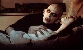 Nosferatu - Phantom der Nacht mit Klaus Kinski - Bild 6