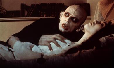 Nosferatu - Phantom der Nacht mit Klaus Kinski - Bild 1