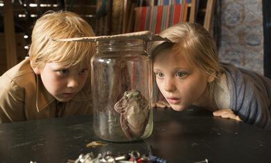 Hilfe, unser Lehrer ist ein Frosch! mit Bobby van Vleuten und Yenthe Bos - Bild 1