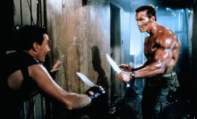 Das Phantom Kommando mit Arnold Schwarzenegger und Vernon Wells - Bild 125
