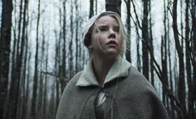 The Witch mit Anya Taylor-Joy - Bild 83