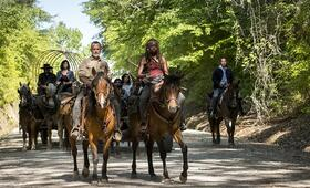 The Walking Dead - Staffel 9 mit Andrew Lincoln, Danai Gurira, Pollyanna McIntosh, Seth Gilliam und Alanna Masterson - Bild 5