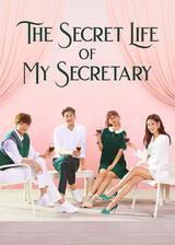 The Secret Life of My Secretary - Poster