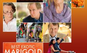 Best Exotic Marigold Hotel - Bild 16