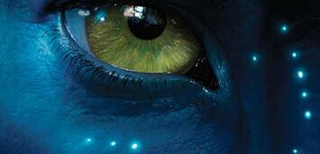 Bild zu:  I see you