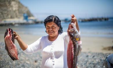 Ceviche, mein Lieblingsgericht aus Peru - Bild 2