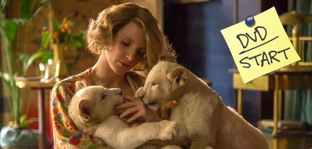Bild zu Die Frau des Zoodirektors - Ergreifende Bestseller-Verfilmung jetzt auf DVD &Blu-ray