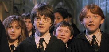 Bild zu:  Begeistert: Harry Potter und Co.