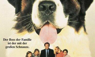 Ein Hund namens Beethoven - Bild 2