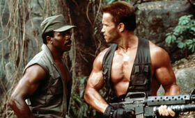 Predator mit Arnold Schwarzenegger - Bild 25