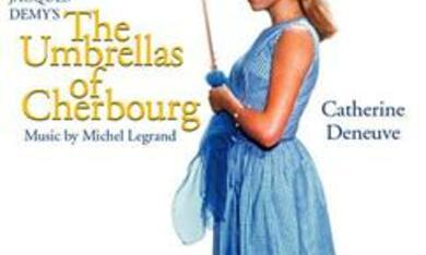 Die Regenschirme von Cherbourg - Bild 3