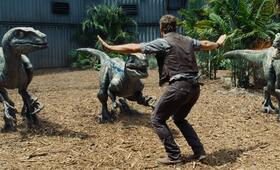 Jurassic World mit Chris Pratt - Bild 73