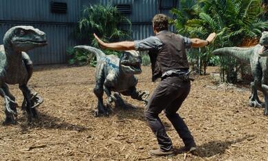 Jurassic World mit Chris Pratt - Bild 5