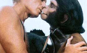 Planet der Affen mit Charlton Heston - Bild 7