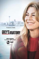 Grey's Anatomy - Staffel 15 - Poster
