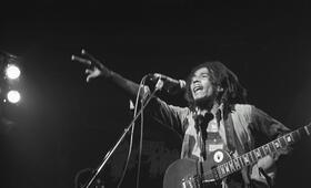 Marley - Bild 6