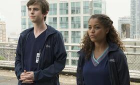 The Good Doctor, The Good Doctor Staffel 1 mit Freddie Highmore und Antonia Thomas - Bild 20