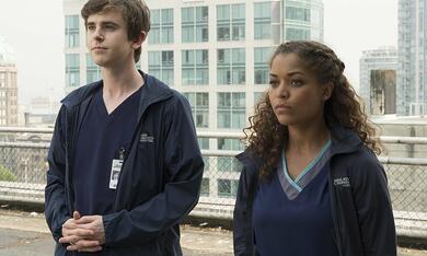 The Good Doctor, The Good Doctor Staffel 1 mit Freddie Highmore und Antonia Thomas - Bild 6