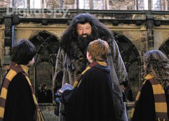 Robin Wiliams als Hagrid