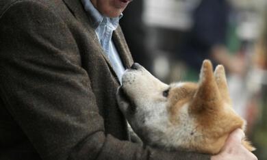 Hachiko - Eine wunderbare Freundschaft - Bild 9