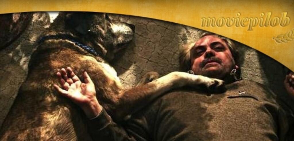 Szene aus Von Hunden und Pferden