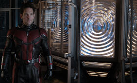 Ant-Man and the Wasp mit Paul Rudd - Bild 32