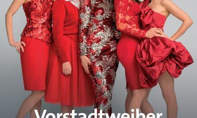 Vorstadtweiber, Vorstadtweiber Staffel 1 - Bild 1