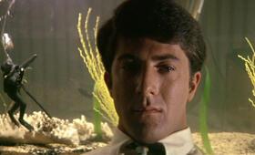 Die Reifeprüfung mit Dustin Hoffman - Bild 11