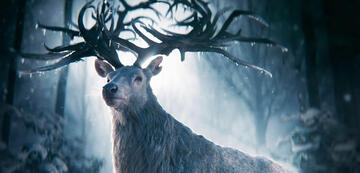 Fantasy-Event Shadow and Bone als Buch-Verfilmung im April 2021