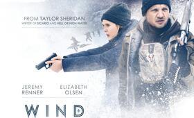 Wind River mit Jeremy Renner und Elizabeth Olsen - Bild 67
