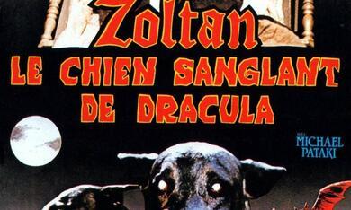 Zoltan, Draculas Bluthund - Bild 3
