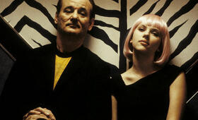Bill Murray in Lost in Translation - Bild 119