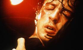 Rocky mit Sylvester Stallone - Bild 93