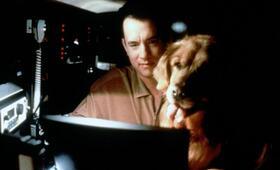 e-m@il für Dich mit Tom Hanks - Bild 17