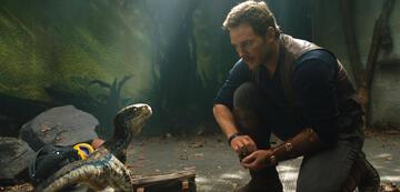 Jurassic World 2 mit Chris Pratt
