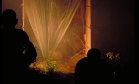 Apocalypse Now - Bild 46