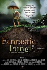 Fantastic Fungi - Poster