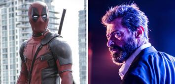 Bild zu:  Deadpool / Wolverine