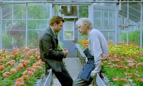 Der Dieb der Worte mit Bradley Cooper und Jeremy Irons - Bild 79
