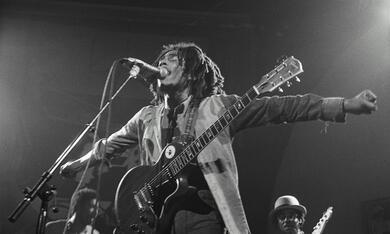 Marley - Bild 7