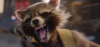 Bradley Cooper als Rocket Racoon.