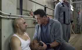 Escape Plan mit Arnold Schwarzenegger und Sylvester Stallone - Bild 204