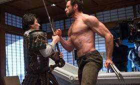 Wolverine Weg Des Kriegers Stream Deutsch