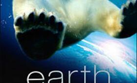 Unsere Erde - Der Film - Bild 25